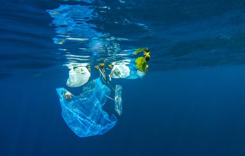 El impacto de las 8.300 millones de toneladas de plástico generadas mundialmente