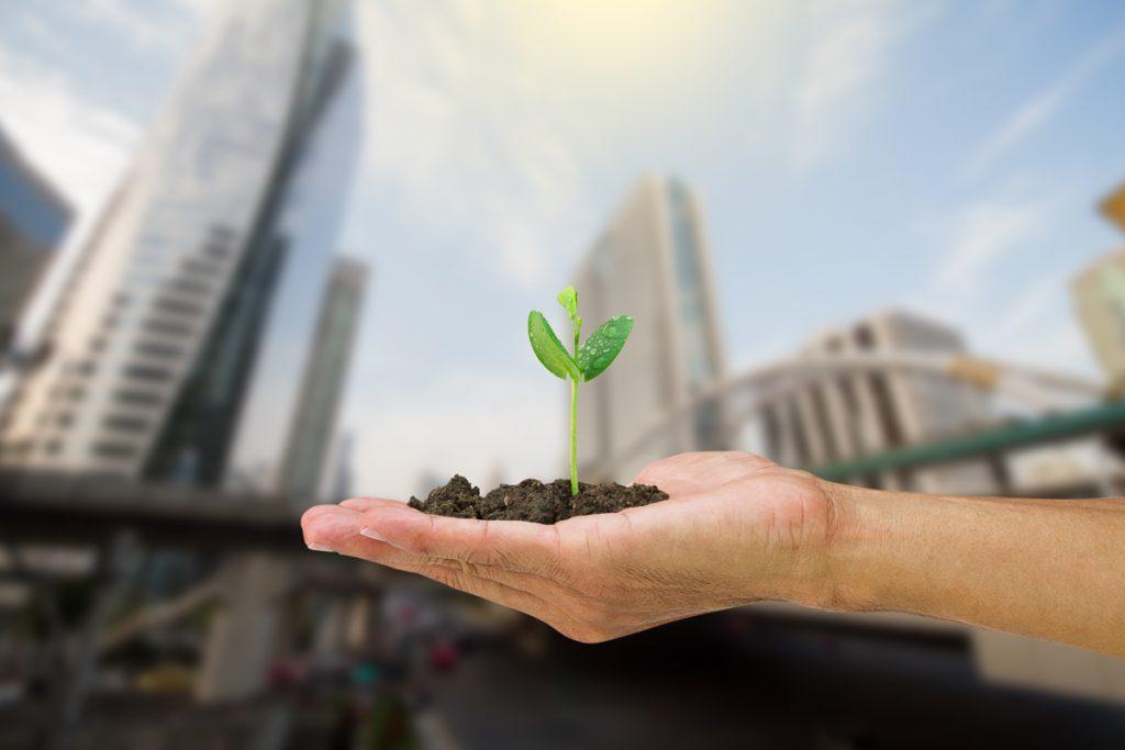 ¿Podrían los residuos orgánicos convertirse en nuevos materiales de construcción?